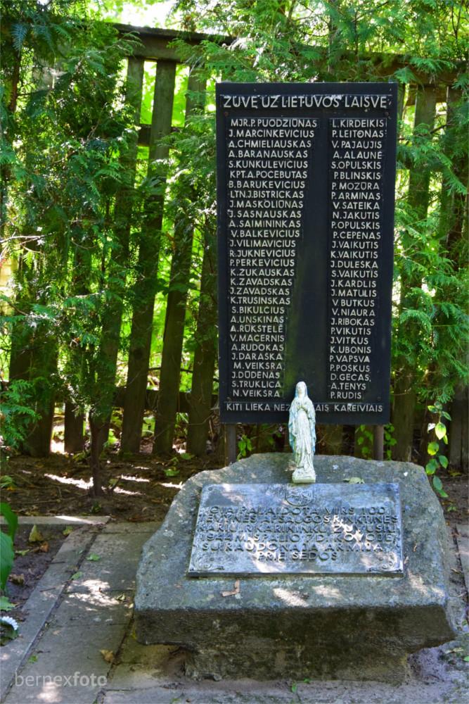 Tėvynės apsaugos rinktinės karių kapas