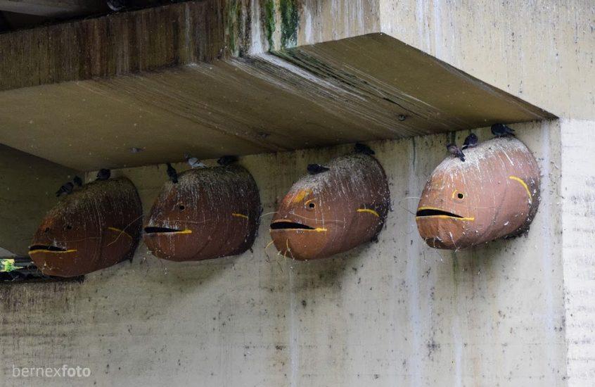 """Skulptūrų ansamblis """"Suvalgytos žuvys"""""""