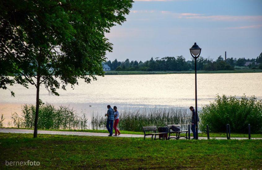 Širvėnos ežero pakrantė